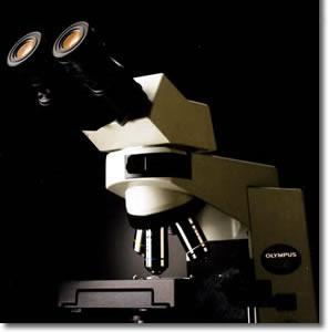 CX41生物显微镜