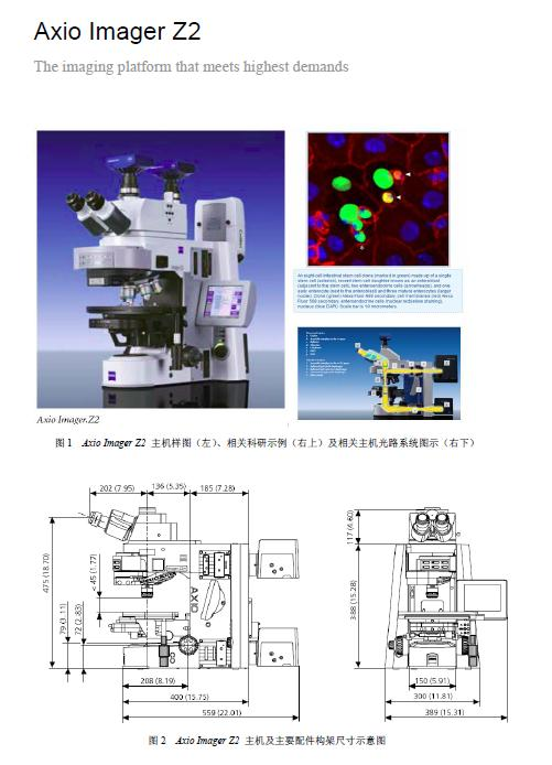 蔡司顶级正置显微镜Axio Imager A2/D2/M2