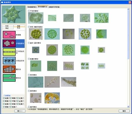 Algacount S系列藻类智能鉴定计数仪(S300型)